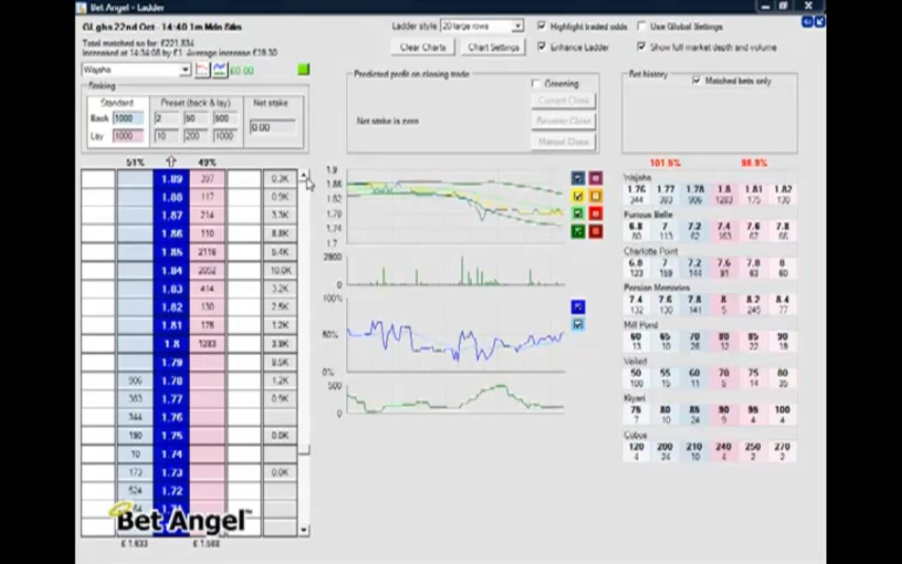 Ibetx betting exchange pokeball mod minecraft 1-3 2-4 betting system
